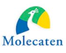 Deba Vastgoed Onderhoud - molecaten-1
